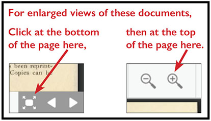 Icons for enlarging PDF viewer