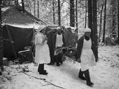 Field hospital in World War II Russia, photo by Anatoliy Granin (1943), Creative Commons Share-Alike license.